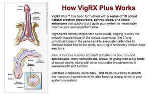 VIGRX PLUS (Вигрикс Плюс) 60 таблеток для увеличения и потенции, стойкой эрекции