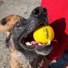 """Мяч для игры с собакой """"Waboba Fetch"""""""