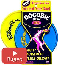 Фрисби для собак Blue