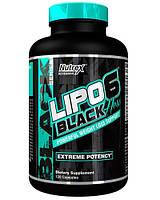 Nutrex  Lipo-6 Black Hers (120 tab)