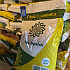 Семена подсолнечника Раптор нсх 7258 стойкий к 7 рас заразихи A-G, среднеранний 105 дн, фото 4