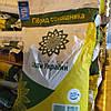 Семена подсолнечника Раптор нсх 7258 стойкий к 7 рас заразихи A-G, среднеранний 105 дн, фото 2
