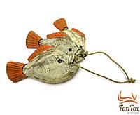 """Морской декор """" Рыбы """" 3 шт"""