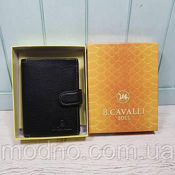 Мужской итальянский кожаный кошелёкB.Cavalli в двух размерах
