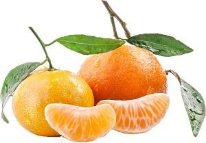Сокосодержащая база концентрат по вкусам (Соковмісна база за смаками) Цитрусовий