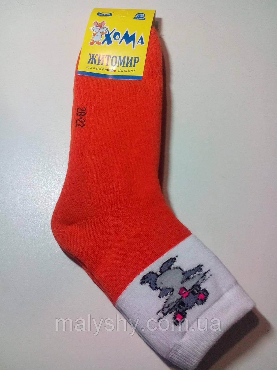 Детские носки махровые ХОМА ЖИТОМИР р.20-22 МЫШКА-оранж/шкарпетки дитячі зимові махрові, носочки махра зимние