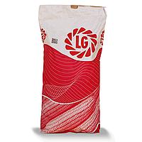 Семена подсолнечника Лимагрейн ЛГ Тунка