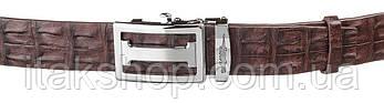 Ремень-автомат CROCODILE LEATHER 18177 из натуральной кожи крокодила Коричневый, Коричневый, фото 2