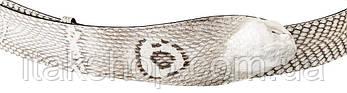 Ремень SNAKE LEATHER 18199 из натуральной кожи кобры Белый, Белый, фото 2