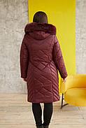 Женская тёплая, удобная и красивая зимняя куртка 231 / размер 52-68 цвет бордо, фото 2