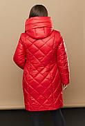 Женский стильный и практичный тёплый пуховик 230 / размер 46-68 / цвет красный, фото 2
