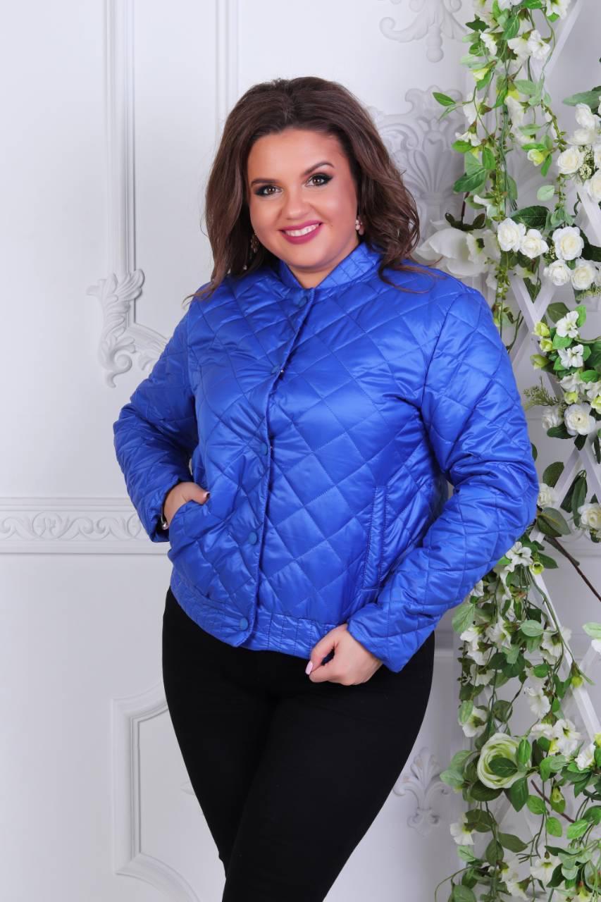 Куртка жіноча 310, новинка 2018, колір яскраво синій (електрик)
