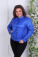 Куртка жіноча 310, новинка 2018, колір яскраво синій (електрик), фото 1