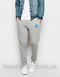 Теплые спортивные мужские штаны Adidas (Адидас)