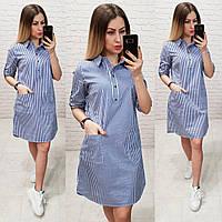 Платье - рубашка  арт. 831 белое в ярко синюю полоску