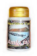 Амла, Амалаки, Amla, 100 табл. - самый богатый источник витамина С, антиоксидант, иммуномодулятор