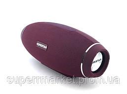 Hopestar H20 10W Portable PowerbankWiress Speaker FM Bluetooth MP3, бордо, фото 3