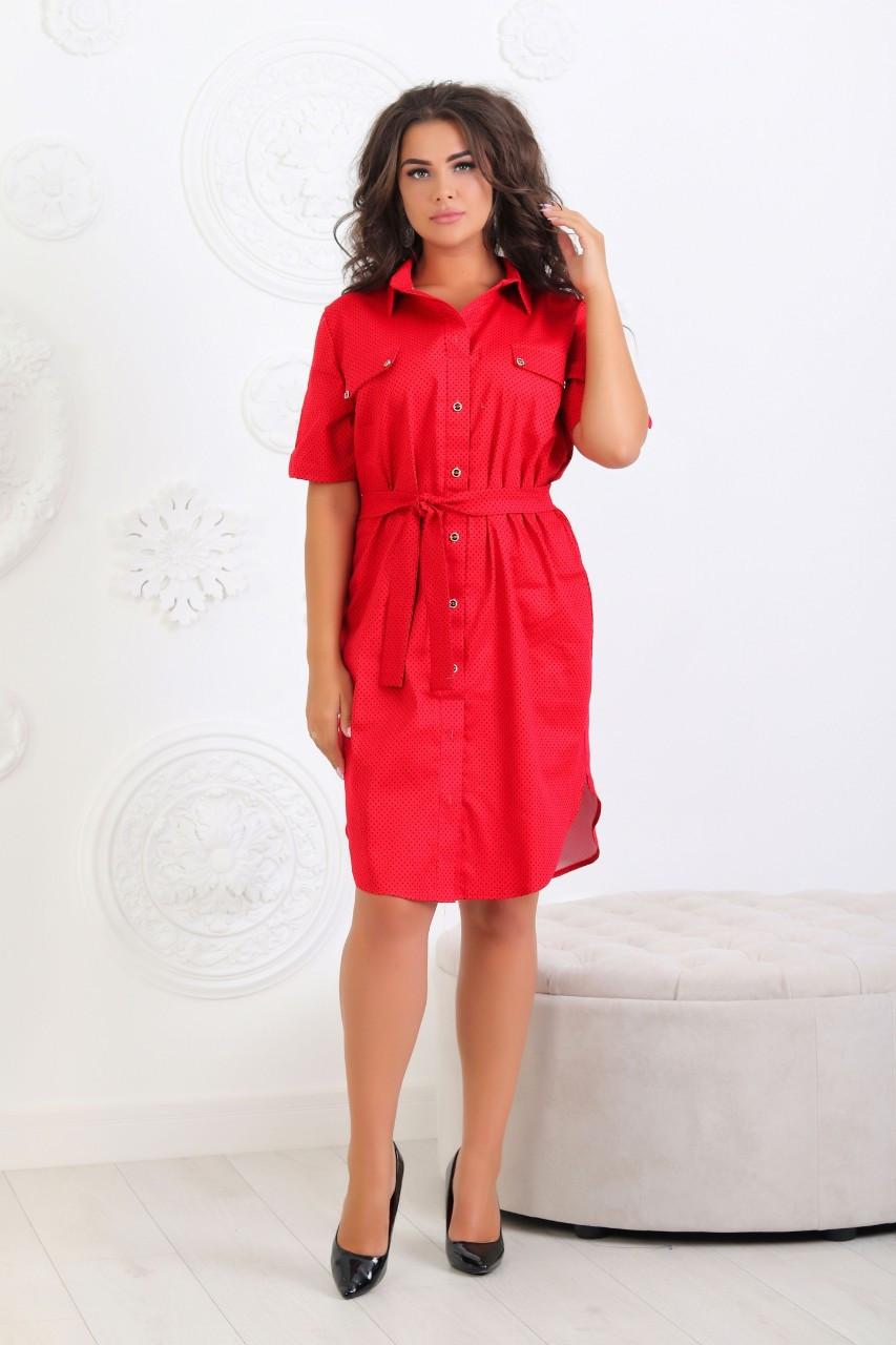 Платье - рубашка коттон  арт. 101/2 красное в черный горох