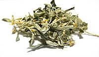 Лох серебристый листья 100 грамм (дикая маслина)