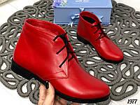 38 р. Ботинки женские деми красные кожаные на низком ходу,демисезонные,из натуральной кожи,натуральная кожа, фото 1