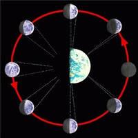 Лунный посевной календарь 2013