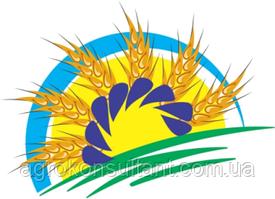 Результаты испытаний гибридов подсолнечника и кукурузы