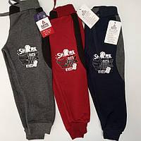 Спортивные штаны для мальчика  с начёсом 86-104