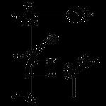 Душевой набор Kludi Zenta Shower Duo 605770500, фото 2