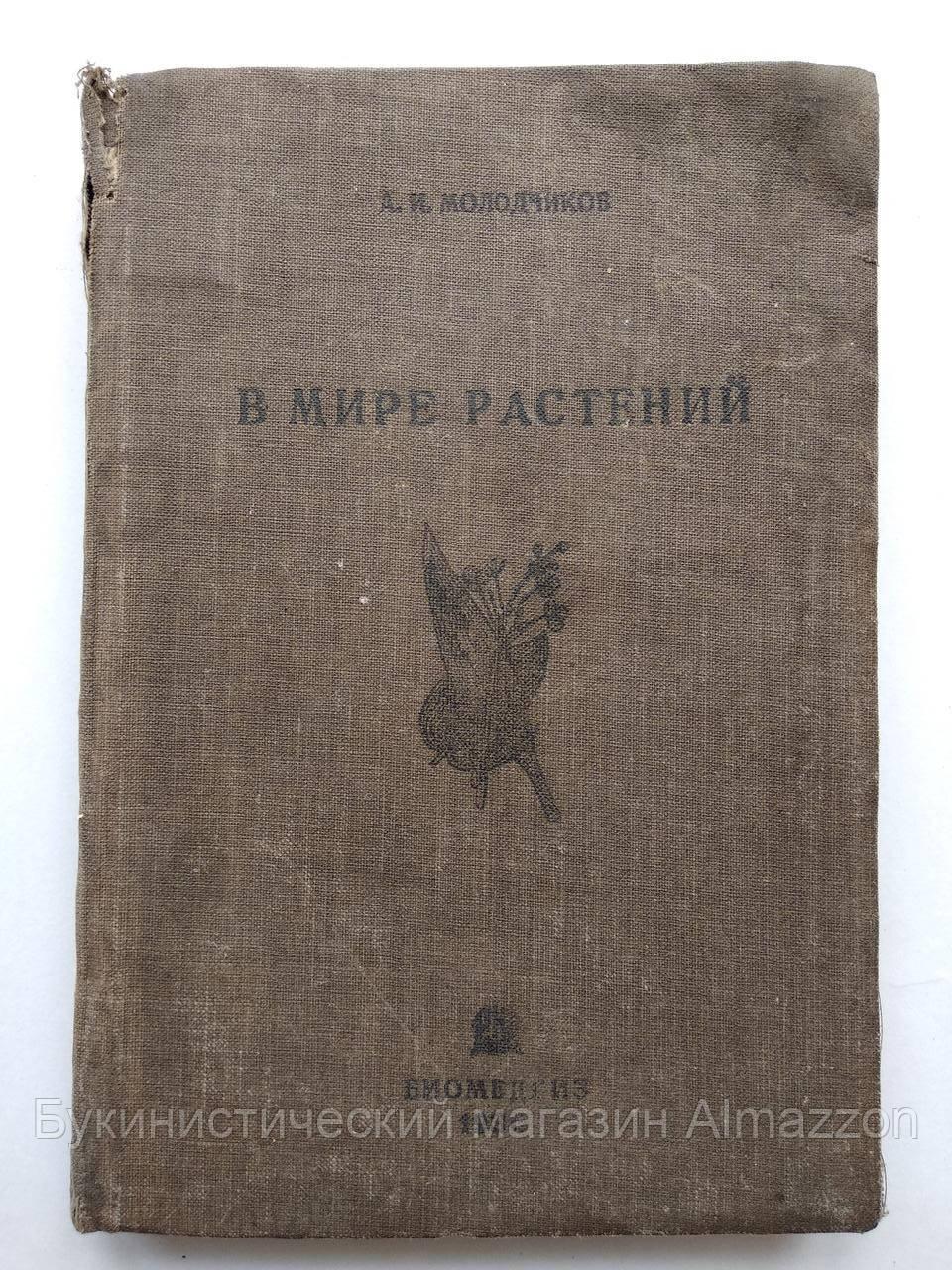 1936 В мире растений. А.И.Молодчиков. Биомедгиз.