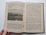 1936 В мире растений. А.И.Молодчиков. Биомедгиз., фото 5