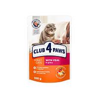 Корм Клуб 4 Лапи CLUB 4 PAWS вологий для дорослих котів з телятиною в соусі 100 г