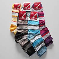 Женские махровые носки Еліт Житомир - 8.50 грн./пара (полоска, гладь), фото 1