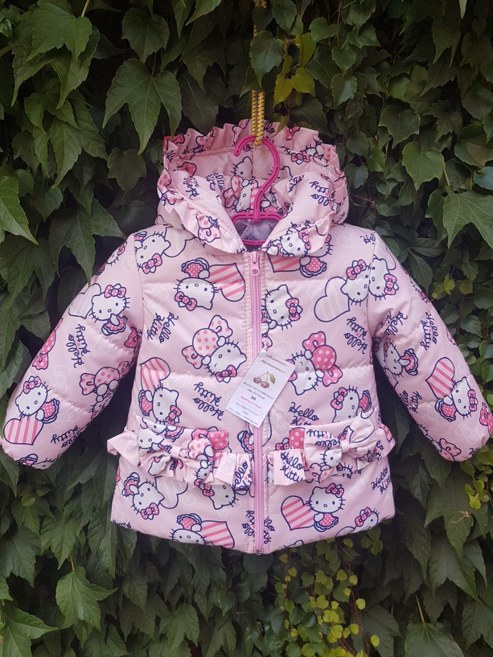 Куртка демисезонная для маленьких модниц (0110/9)