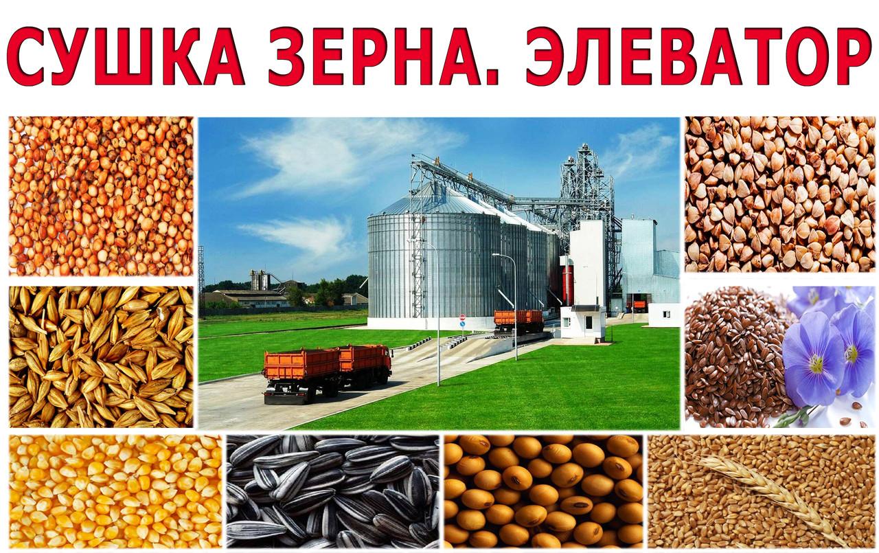 Сушка зерна на элеваторе цены соединение ленты транспортера