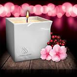 Массажная свеча Jimmyjane с ароматом Цветения ягод, фото 2
