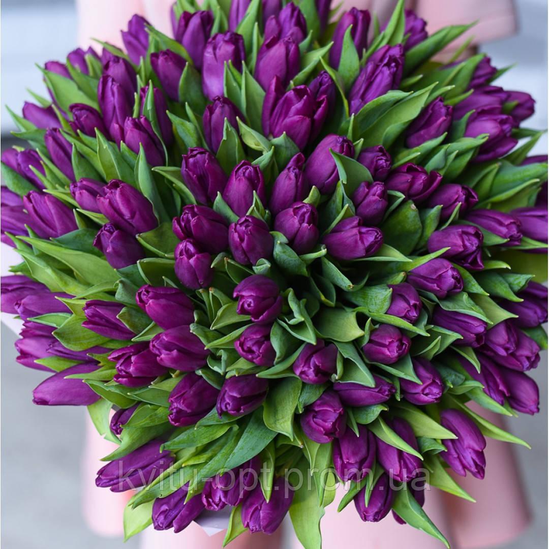 Сток-лист на не охлажденные и охлажденные луковицы тюльпанов