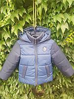 Куртка демисезонная для мальчика (0110/19)