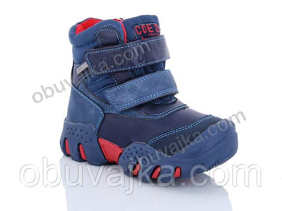 Зимняя обувь оптом Ботинки для мальчиков от фирмы Солнце(27-32), фото 2