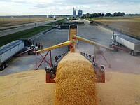 Конвейер ленточный передвижной для зерна, фото 1