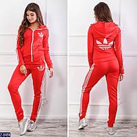 Модный спортивный костюм 8482/8484