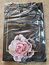 Подарочный бумажный пакет КВАДРАТ 24*24*10 см Розовая роза, фото 2