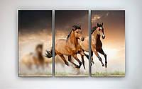 Интерьерная модульная фотокартина на холсте Лошади Пара лошадей Лошади в природе 90х60 их 3х частей
