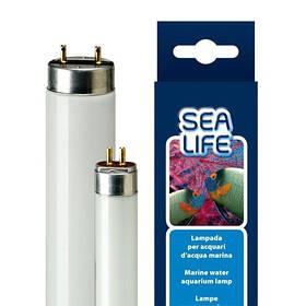 Лампа для аквариума Ferplast Aquacoral 24 W Lamp T5, 55 см