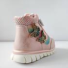 Теплые деми ботинки девочкам, р. 23, 24,  26, 27, 28, фото 3