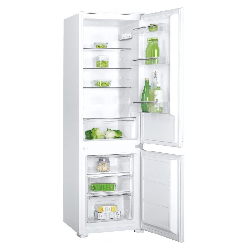 Холодильник INTERLINE IBC 250, фото 1