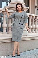 Стильное платье   (размеры 50-56) 0209-02