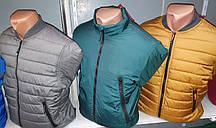 Куртка мужская демисезонная на синтепоне (0110/35)