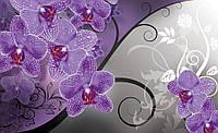 Фотообои 3D цветы 368х254 см : Орхидеи и серые стебли (1280CNP8)