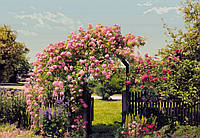 Фотообои бумажные на стену 368х254 см 8 листов: Сад цветов. Komar 8-936, фото 1