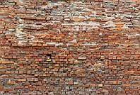 Фотообои флизелиновые на стену 368х248 см 4 листа: Кирпичная стена. Komar  XXL4-025
